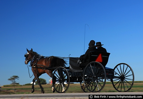 Wisconsin;WI;road;man;woman;horse drawn carriage;fall;country;buggy;couple;agricultural scene;Amish