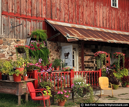 Barns;agriculture;country;farm;farm buildings;Minnesota;MN;Carver County MN;Waconia MN;plants;plants for sale;potted plants;red barn;summer;rural