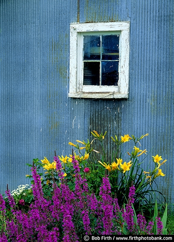 Barns;agriculture;country;farm;farm buildings;garden;flower garden;rural;barn window;midwest farm;metal barn;gray barn;grey barn;barn detail;barn close up;summer