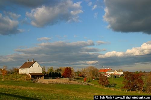 Barns;agriculture;country;farm;farm buildings;Minnesota;MN;Carver County MN;Victoria MN;rural;farm field;fence;clouds;white barn;wood barn;fall;autumn;homestead