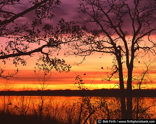 Mississippi River;Minnesota;MN;peaceful;scenic;silhouette;sunrise;sunset;trees;WI;Wisconsin;bluffs;colorful sky