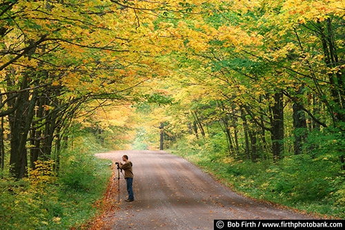 apprentice;backroads;destination;fall colors;Minnesota;MN;North Shore Scenic Drive;north woods;photographer;teenager;tourism;tourist;trees;woodlands;young adult;young male;Sawtooth National Forest;road