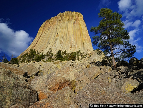 Devil's Tower;geological landmark;National Monument;rock formation;sacred;volcano core;Wyoming;Black Hills;destination;prairie;tourism;WY;rock;rocks;trees;rock landscape;Devils Tower;northeastern Wyoming;Crook County;Bear Lodge Mountains;Devils Tower National Monument;laccolithic butte;near Hulett and Sundance;rolling prairie