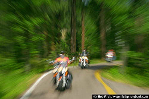 touring;Sturgis Motorcycle Rally;South Dakota;SD;roads;motorcyclists;motorcycling;motorcycles;motorbikes;motion;daytime;cycles;blur;Black Hills;bikes;backroads;action;woodlands;woods;trees;winding roads